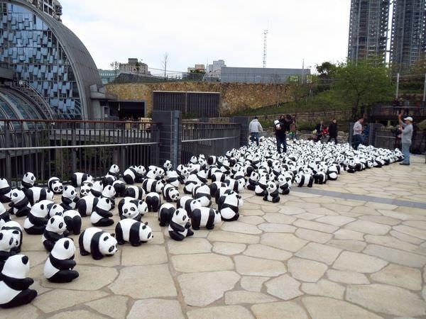熊貓快閃,1600貓熊世界之旅,熊出沒,1600隻紙貓熊