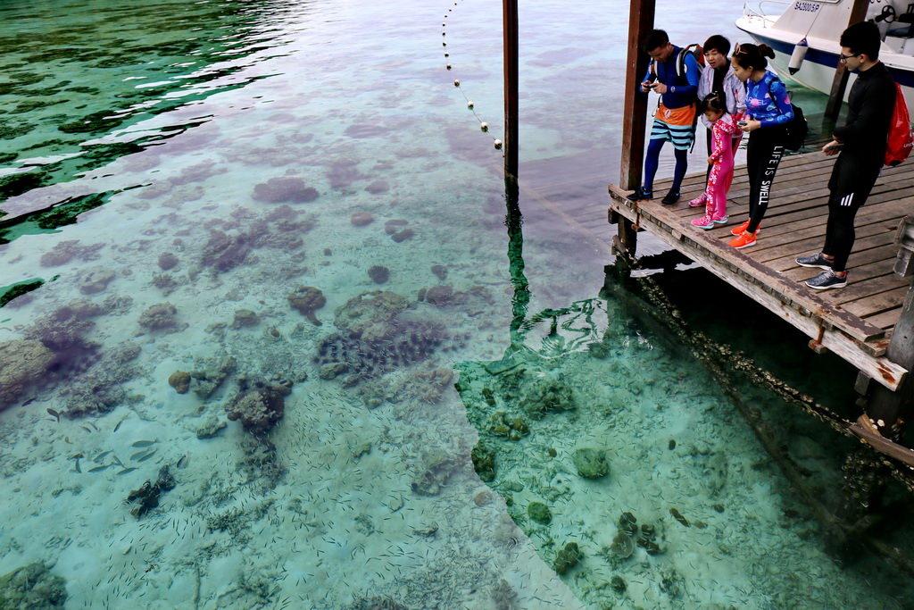 仙本那跳島、敦沙卡蘭海洋公園珍珠島、 萬達灣島、軍艦島、KKday