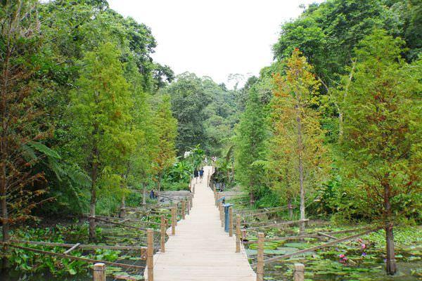 綠世界生態農場、新竹綠世界、草泥馬、生態導覽、芬多精  綠世界生態農場、新竹綠世界、草泥馬、生態導覽、芬多精